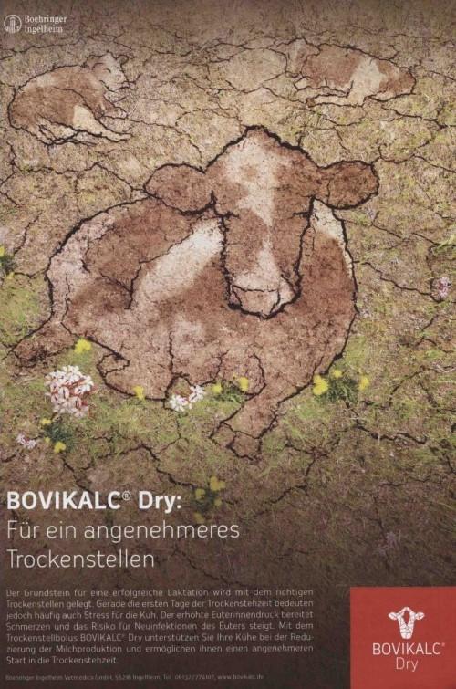 Veterinär-Motiv Dezember 2018: Printanzeige Boehringer Ingelheim für BOVIKALC Dry