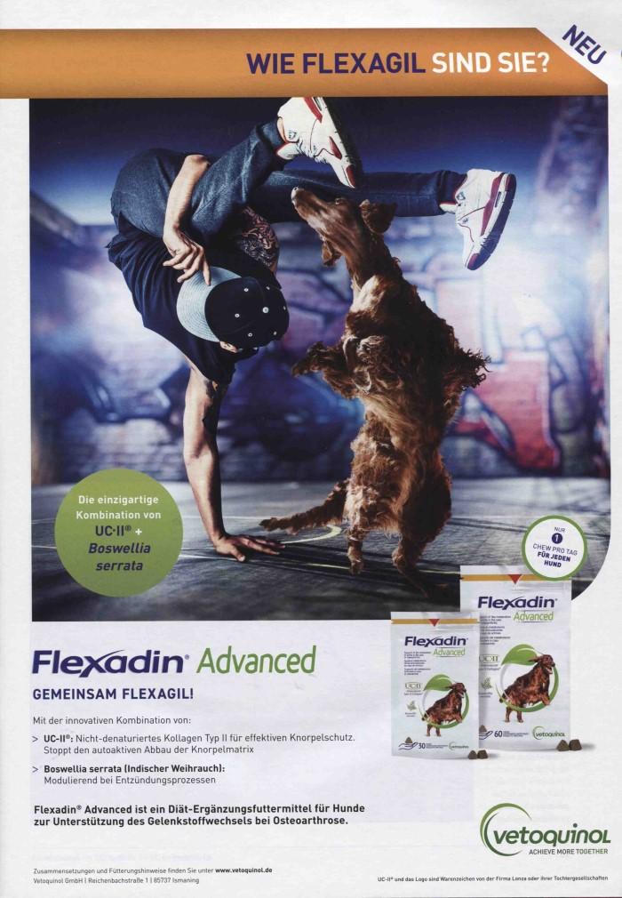 Veterinärmedizin-Motiv Februar 2019: Werbeanzeige Flexadin von Vetoquinol