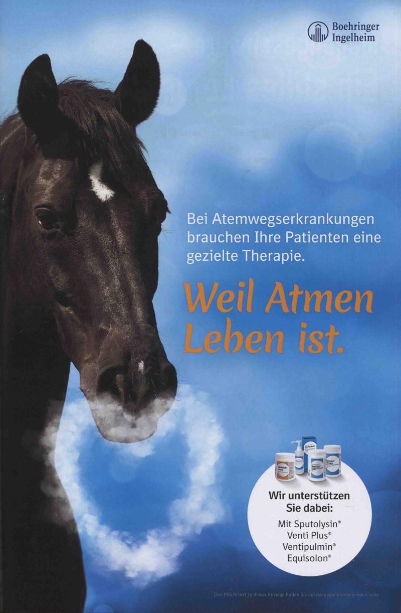 Veterinär-Motiv Januar 2020: Boehringer Ingelheim zum Thema Atemwegserkrankungen