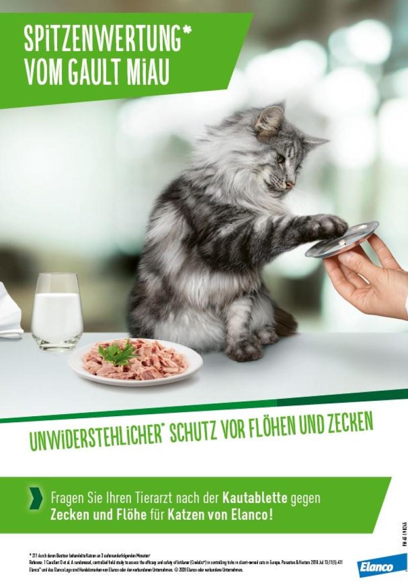 Veterinär-Motiv Mai 2020: Elanco für eine Kautablette gegen Zecken